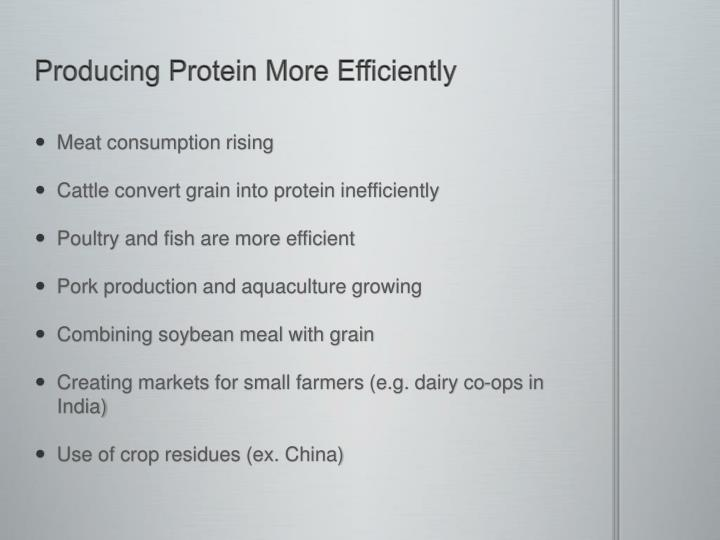 Producing Protein More Efficiently
