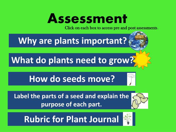 Click on each box to access pre and post assessments
