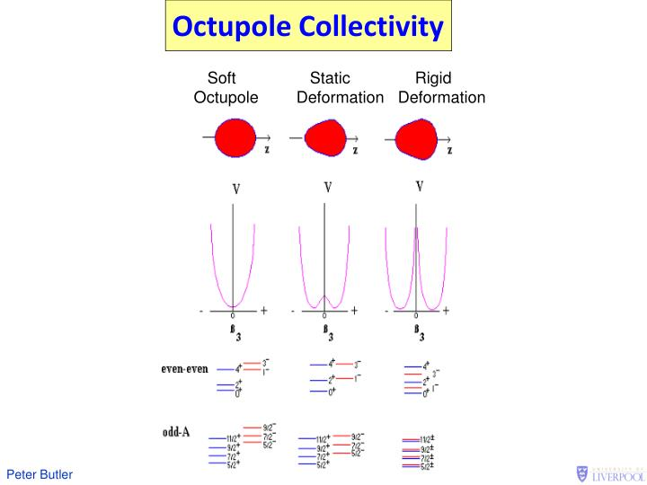 Octupole Collectivity