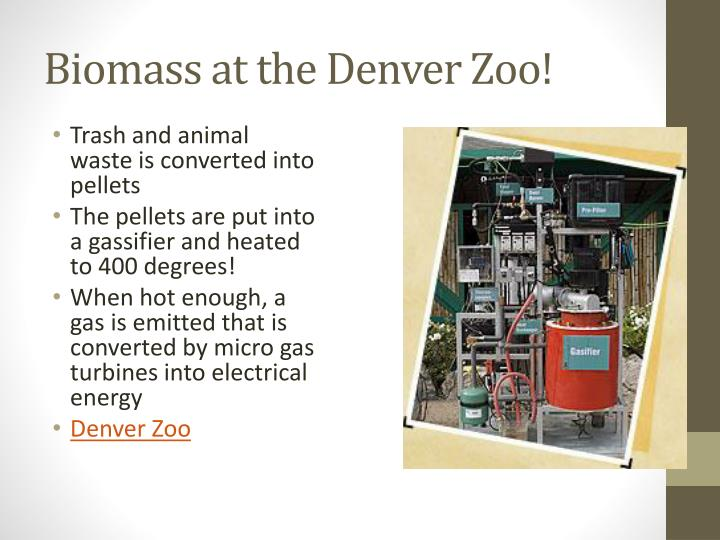Biomass at the Denver Zoo!