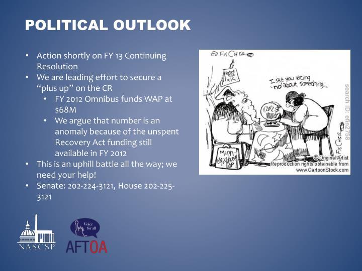 Political outlook