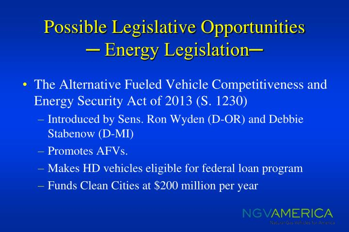Possible Legislative Opportunities