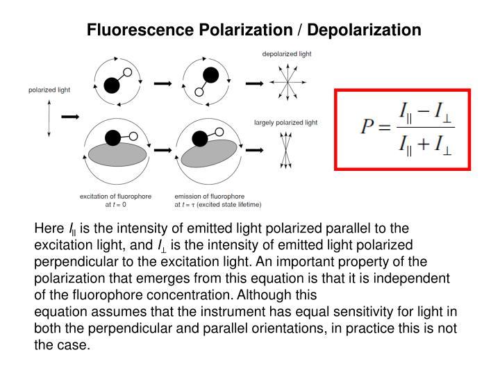 Fluorescence Polarization / Depolarization
