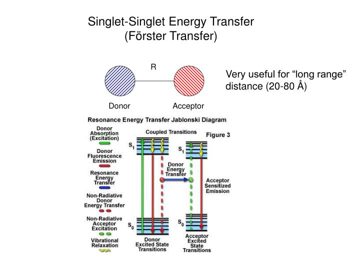 Singlet-Singlet Energy Transfer