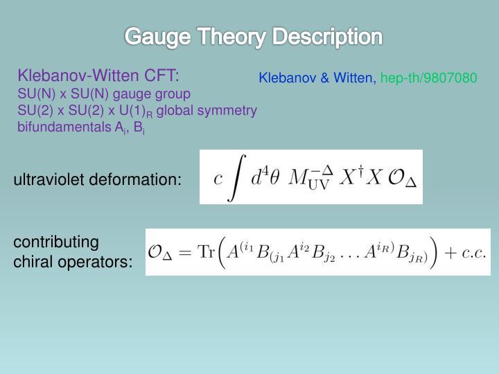 Gauge Theory Description