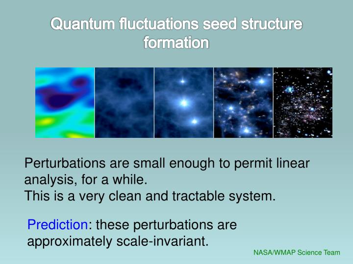Quantum fluctuations seed structure formation