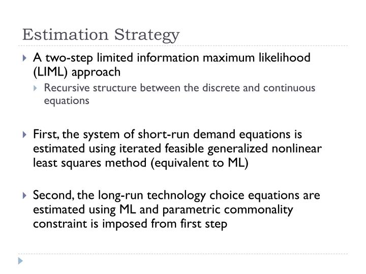 Estimation Strategy