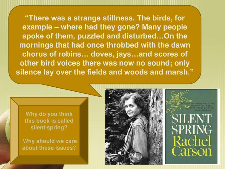 """There was a strange stillness. The birds, for example – where had they gone? Many people spoke of them, puzzled and disturbed…On the mornings that had once throbbed with the dawn chorus of robins… doves, jays…and scores of other bird voices there was now no sound; only silence lay over the fields and woods and marsh."""