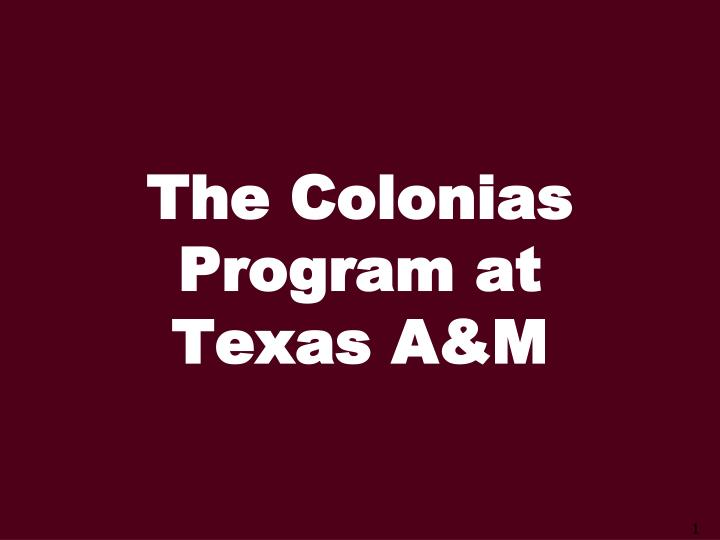 The colonias program at texas a m