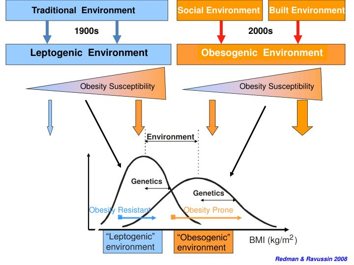 Obesogenic  Environment