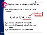 capital asset pricing model capm