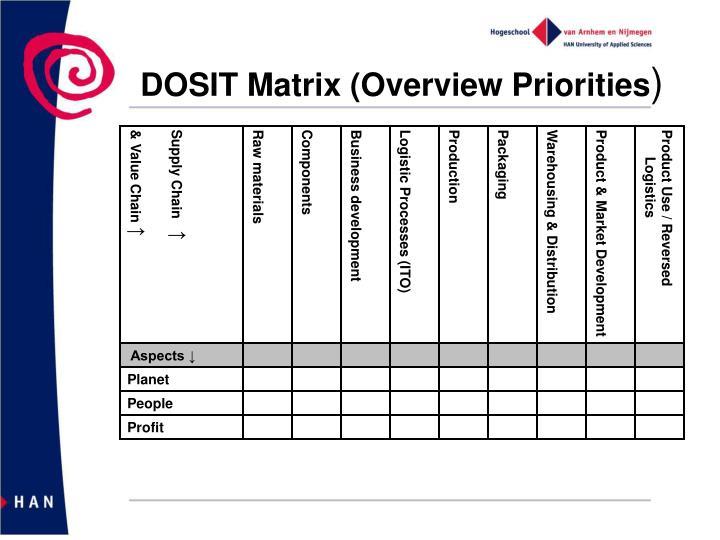 DOSIT Matrix (Overview Priorities