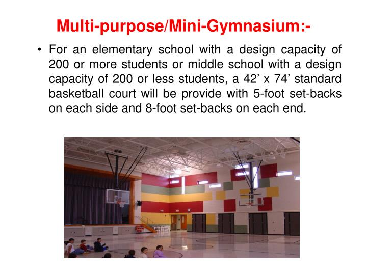 Multi-purpose/Mini-Gymnasium:-