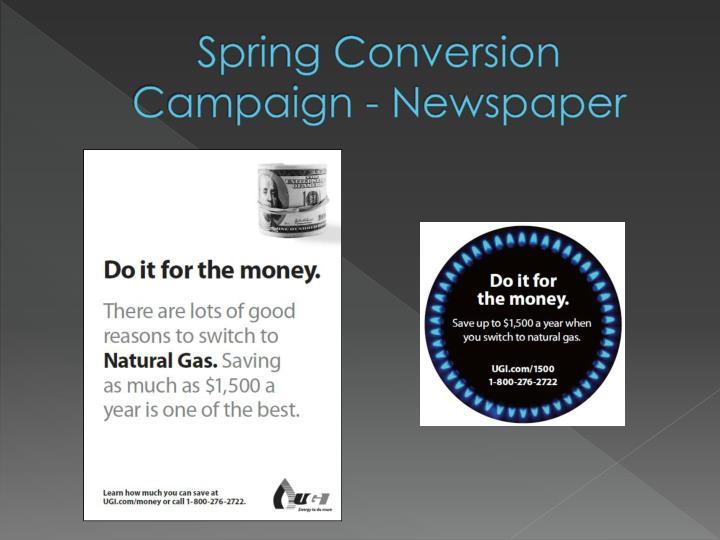 Spring Conversion Campaign - Newspaper