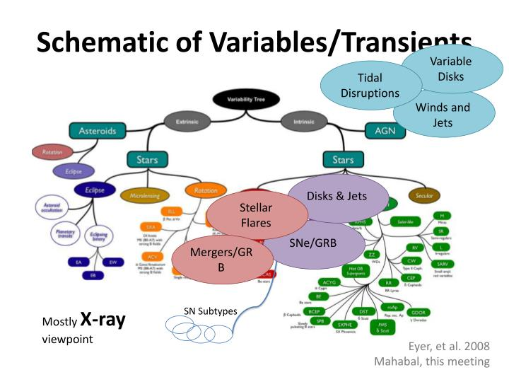 Schematic of Variables/Transients