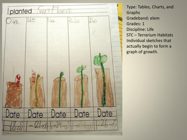 Type: Tables, Charts, and Graphs