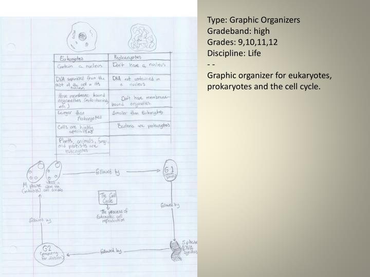 Type: Graphic Organizers