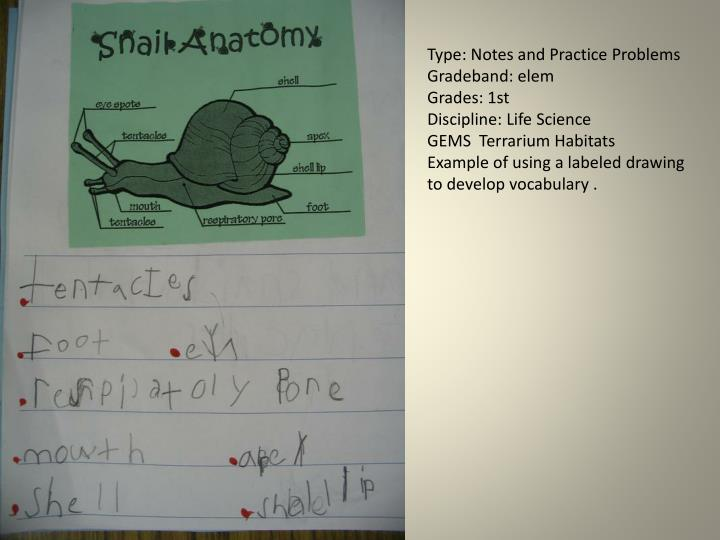 Type: Notes and Practice Problems