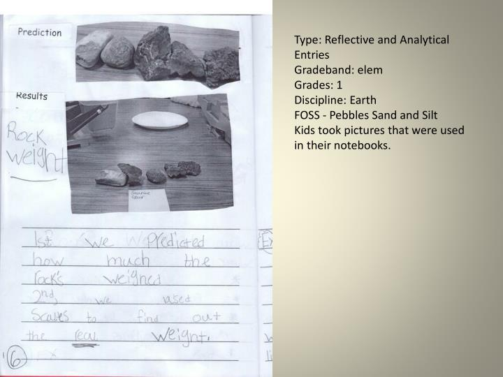Type: Reflective and Analytical Entries