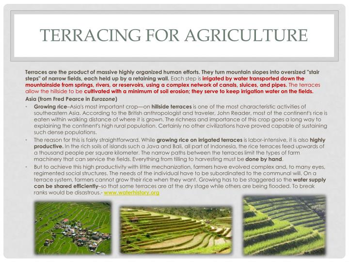 Terracing for agriculture