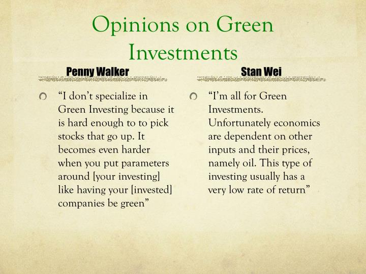 Opinions on Green Investments