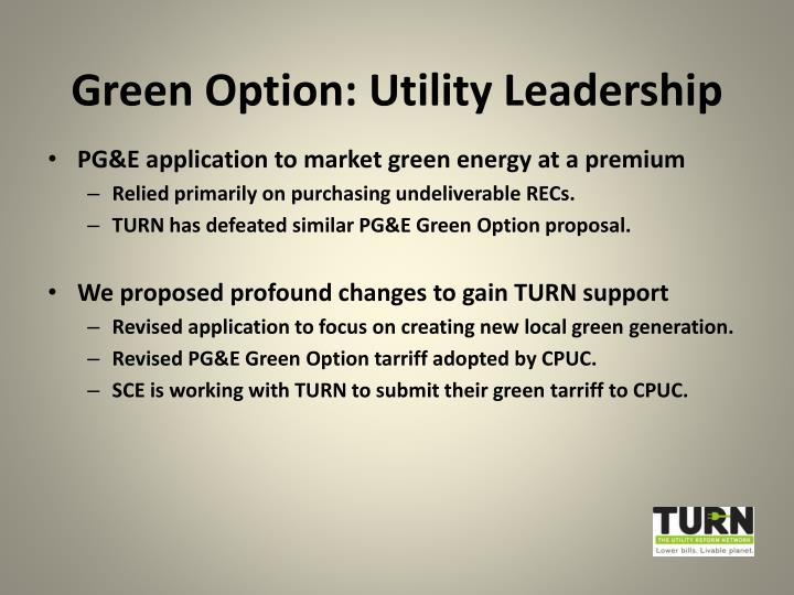 Green Option: Utility Leadership