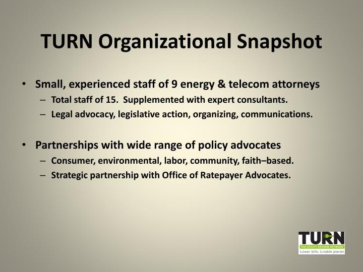 TURN Organizational Snapshot