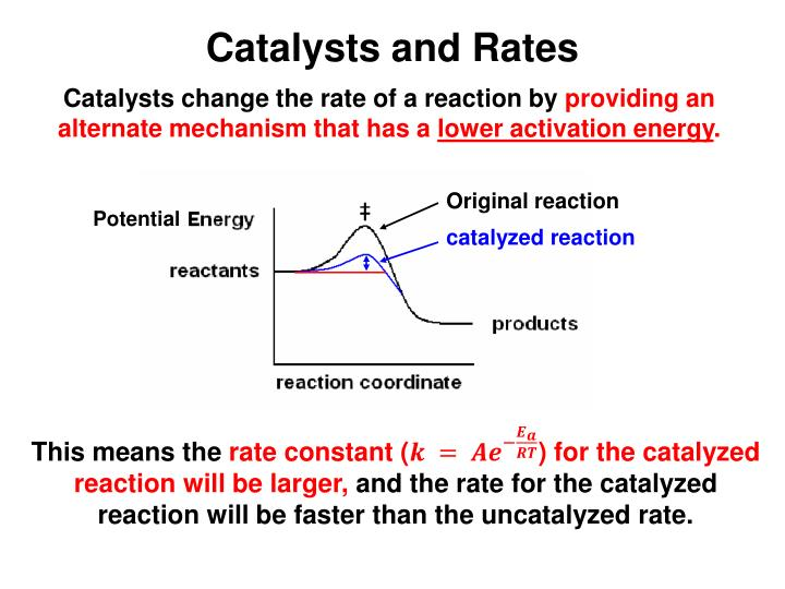 Catalysts and Rates