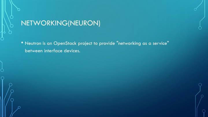Networking(neuron)