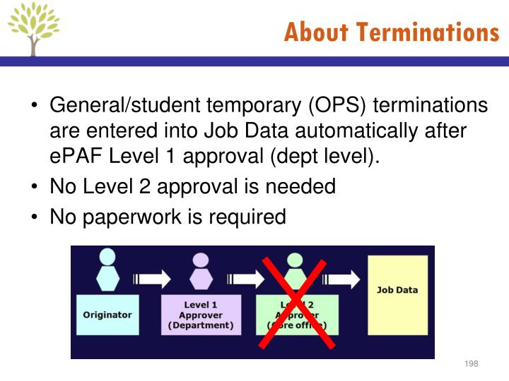 About Terminations