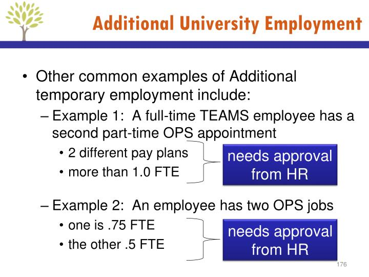 Additional University Employment