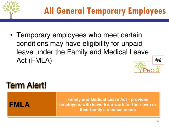 All General Temporary Employees