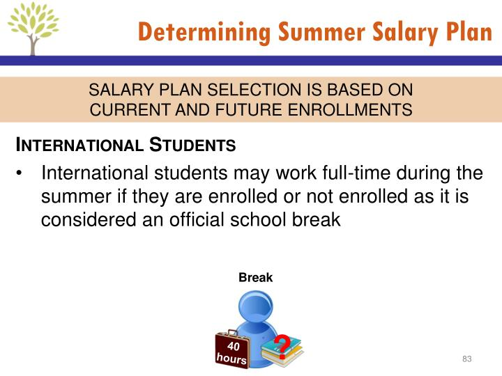 Determining Summer Salary Plan