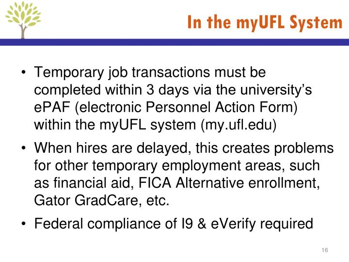 In the myUFL System