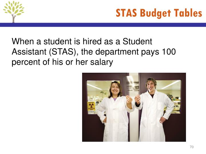 STAS Budget Tables