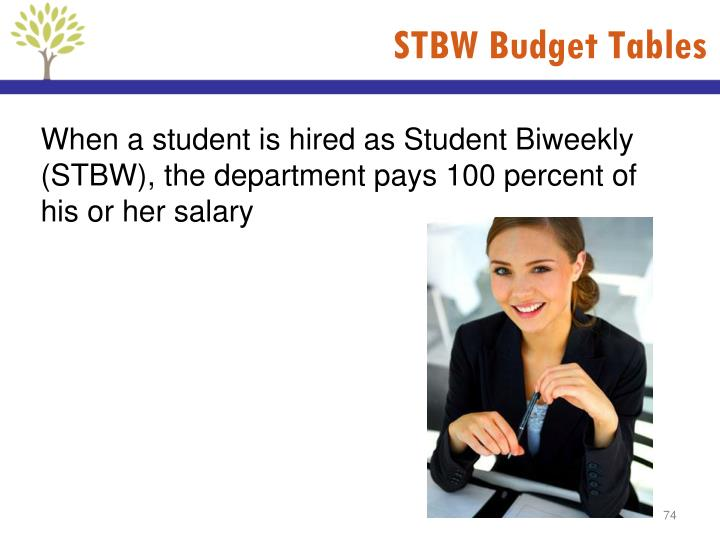 STBW Budget Tables
