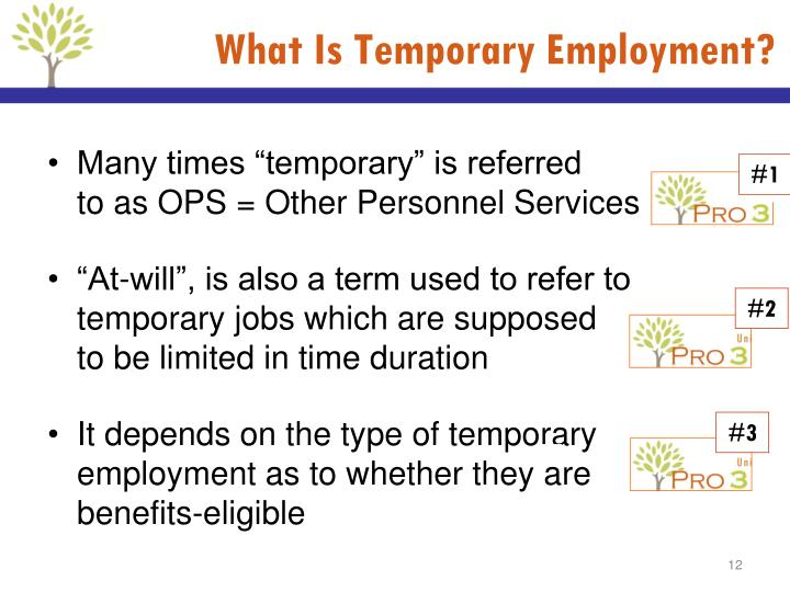 What Is Temporary Employment?