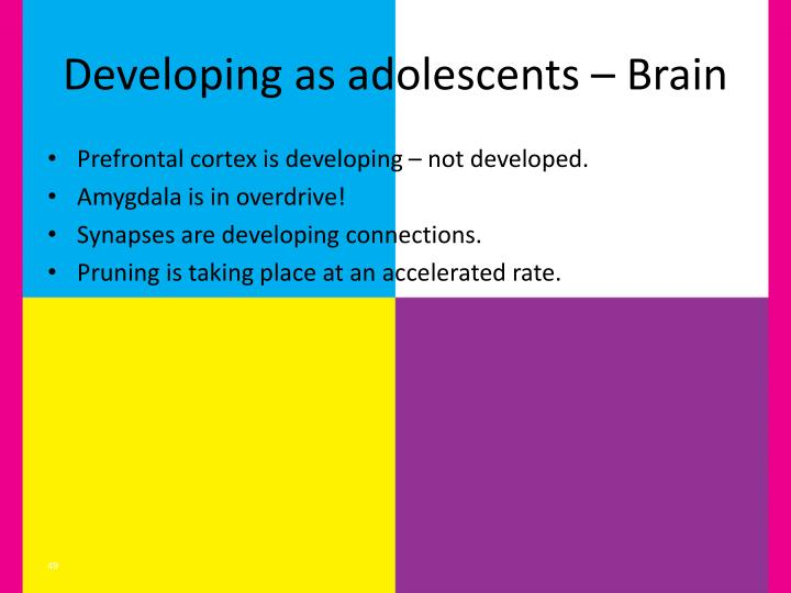 Developing as adolescents – Brain