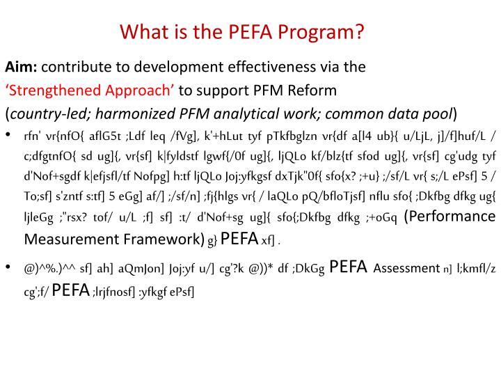 What is the PEFA Program?