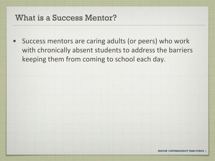 What is a Success Mentor?