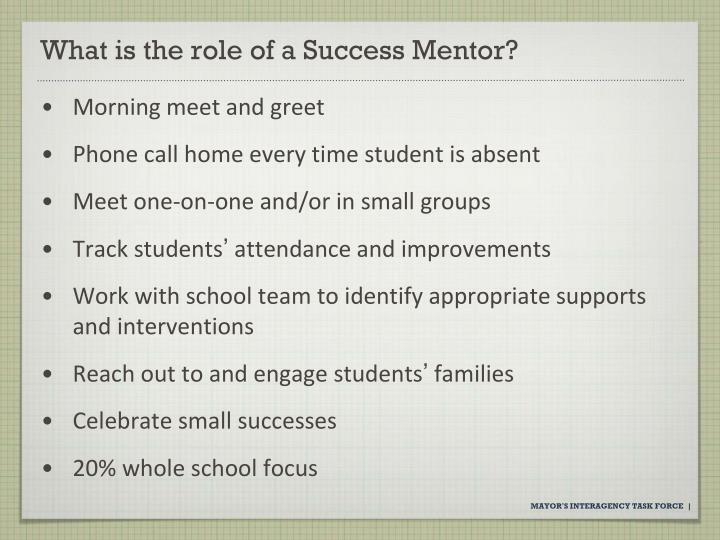 What is the role of a Success Mentor?