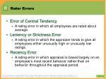 rater errors