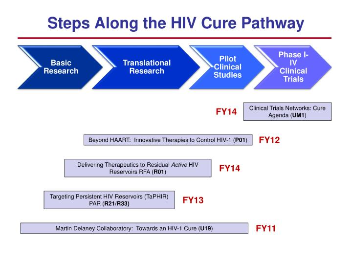 Steps Along the HIV Cure Pathway