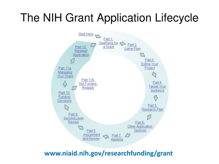The NIH Grant Application Lifecycle