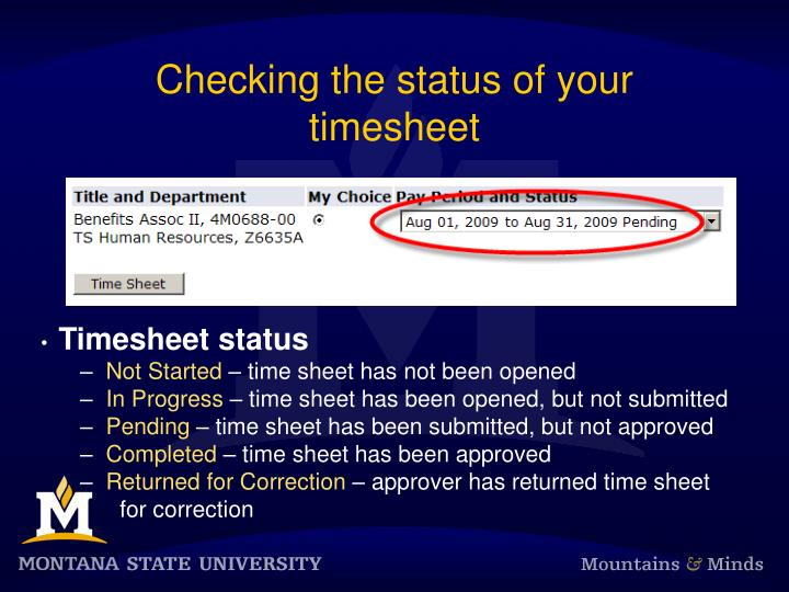 Checking the status of your timesheet