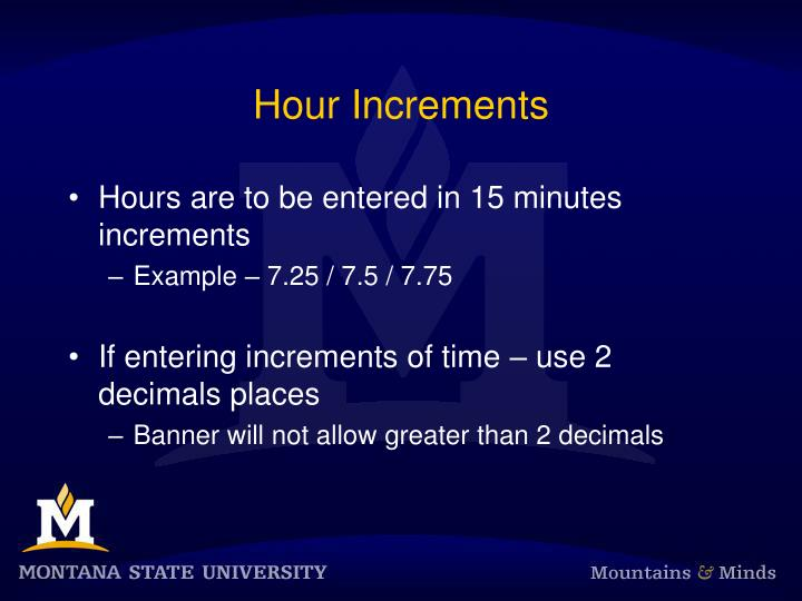 Hour Increments