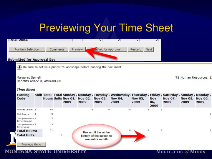 Previewing Your Time Sheet