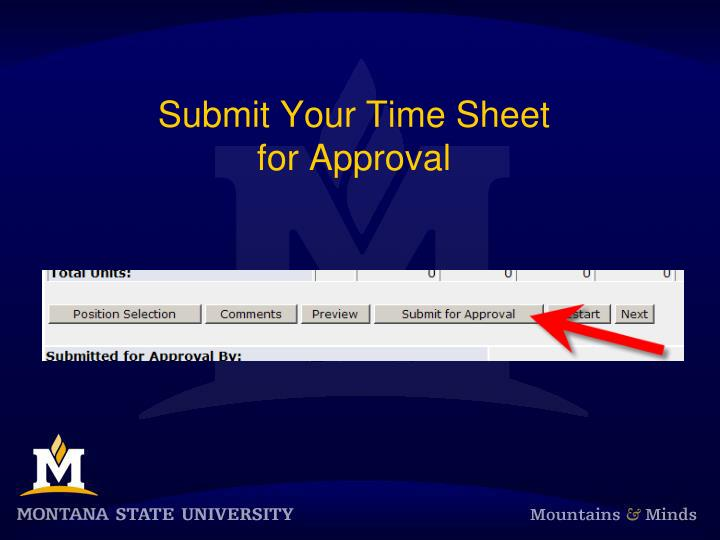 Submit Your Time Sheet