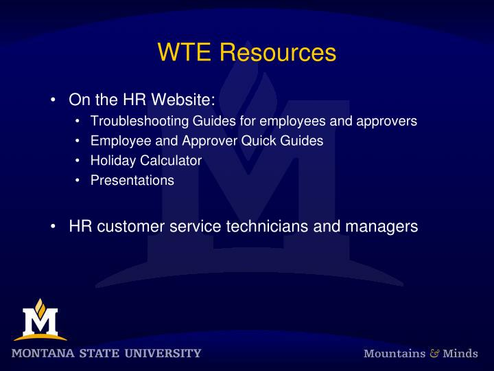 WTE Resources
