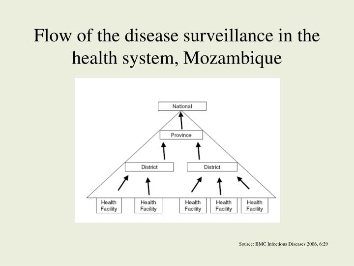 Flow of the disease surveillance in the health system, Mozambique